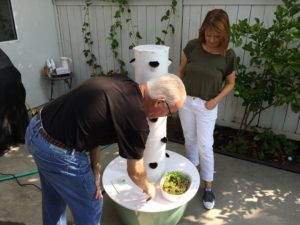 Dr Dana and Peggy Rockey Installing Tower Garden